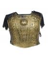 Verkleed schild goud met schouderpads